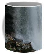 Loooking Glass Falls Coffee Mug