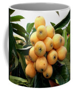 Loquat Exotic Tropical Fruit 4 Coffee Mug