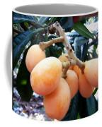 Loquat Exotic Tropical Fruit  Coffee Mug
