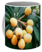 Loquats In The Tree 3 Coffee Mug