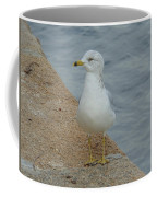 Lost Seagull Coffee Mug