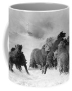 Lost, Souvenir Of Auvergne, August Friedrich Albrecht Schenck Coffee Mug