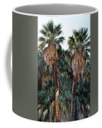 Thousand Palms Oasis  Coffee Mug