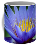 Lotus 6 Coffee Mug