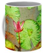 Lotus Flower Bloom In Pink 1 Coffee Mug