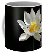 Lotus Reaching For The Sun Coffee Mug