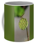 Lotus Seeds Coffee Mug