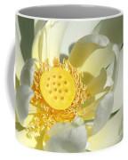 Lotus Up Close Coffee Mug