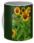 Louisa, Va. Sunflowers 3 Coffee Mug