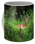 Lounging Fawn Coffee Mug