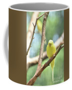 Lovable Little Budgie Parakeet Living In Nature Coffee Mug