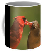 Love Is In The Air Cardinals Square Coffee Mug