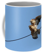 Love Is In The Air Coffee Mug by Mircea Costina Photography