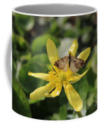 Tasting Marsh Marigold  Coffee Mug