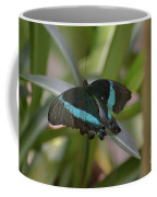Lovely Blue And Black Emerald Swallowtail Buterfly Coffee Mug