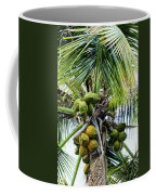 Lovely Bunch Of Coconuts Coffee Mug