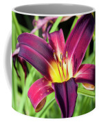 Lovely Day Lily Coffee Mug