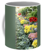 Lovely Flowers In Manito Park Conservatory Coffee Mug