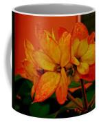 Lovely Flowers1 Coffee Mug