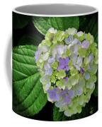 Lovely Hydrangea Coffee Mug