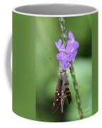 Lovely Moth On Dainty Flower Coffee Mug