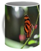 Lovely Orange Oak Tiger In The Spring Coffee Mug
