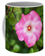 Lovely Pink Rose Coffee Mug
