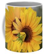 Lovely Sunflowers Coffee Mug