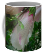 Lovely White And Pink Flowers Coffee Mug