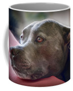 Loving Pitbull Eyes Coffee Mug