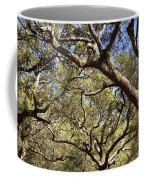 Low Angle View Of Trees In A Park Coffee Mug