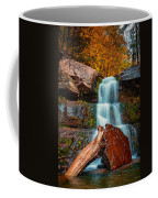 Lower Falls At Kaaterskill Coffee Mug
