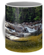 Lower Falls Coffee Mug