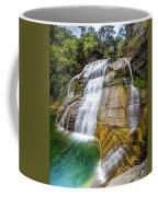 Lower Falls Profile At Enfield Glen Coffee Mug
