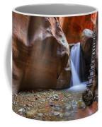 Lower Kannara Creek Falls Coffee Mug
