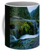 Lower Lewis Falls 1 Coffee Mug