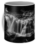 Lower Lewis Falls Washington State Coffee Mug