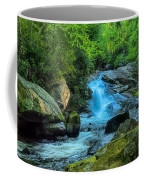 Lower Lynn Camp Falls Smoky Mountains Coffee Mug