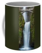 Lower Multnomah Falls Coffee Mug