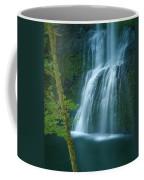 Lower South Falls Coffee Mug