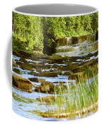 Lower Tahquamenon Falls 6128 Coffee Mug