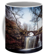 Lumb Falls Panoramic Coffee Mug