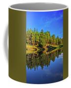 Lunar Reflections Coffee Mug