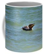 Lunchtime Pelican  Coffee Mug