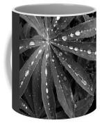 Lupin Leaves With Rain Drops  Coffee Mug