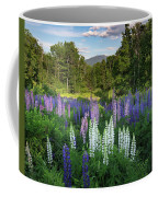Lupine In The Valley Coffee Mug