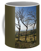 Lush Land Leafless Trees Iv Coffee Mug