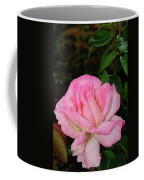 Lustrous Pink Rose Coffee Mug