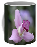 Lycaste Abou First Spring 0884 Coffee Mug
