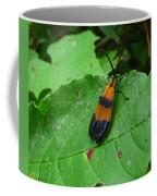 Lycomorpha Moth Coffee Mug
